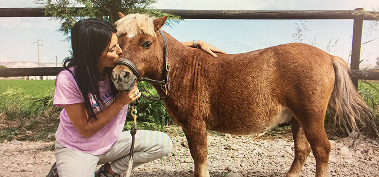 pony-patricia-hernandez-blogefad