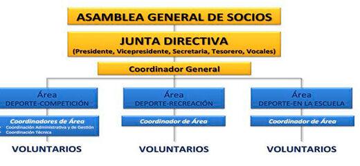 organigrama de un club deportivo